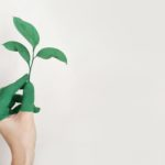 5 Areas to Focus to Achieve Sustainability in Supply Chain Management