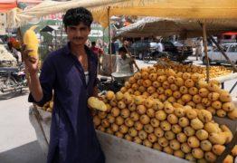 Top 5 Unique Fruit Supply Chain Factors One should be Mindful